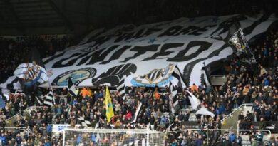 A fans group is attempting to raise funds to try to buy a stake in Newcastle United if owner Mike Ashley is successful in selling the club.