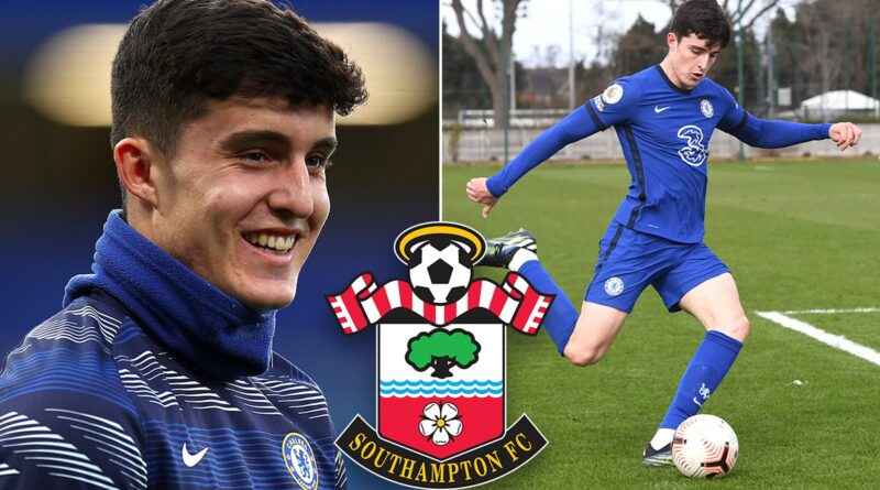 The teenage defender was a top target for the Seagulls, but a summer switch to the south coast will now take him to St Mary's
